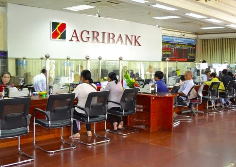 Ngân hàng Agribank là ngân hàng của nhà nước, được thành lập theo Nghị định số 53 của Chính phủ vào ngày 26/3/1988